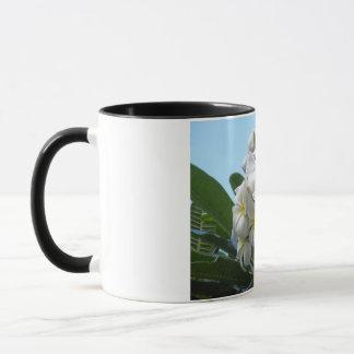 Hawaii Plumeria Mug