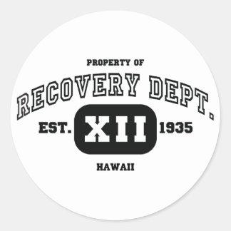 HAWAII Recovery Classic Round Sticker