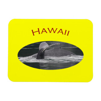 Hawaii Rectangular Photo Magnet