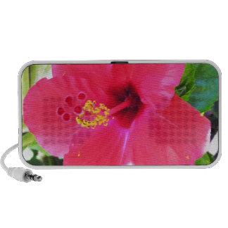 Hawaii Red Hibiscus Flower Portable Speakers