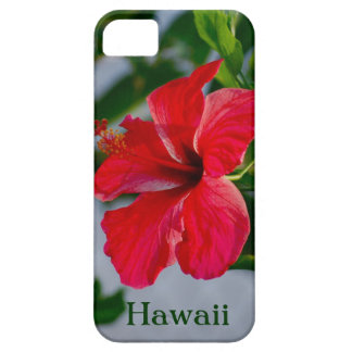 Hawaii Red Hibiscus iPhone SE/5/5s Case