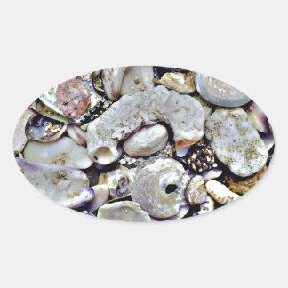 Hawaii Shells Close Up Oval Sticker