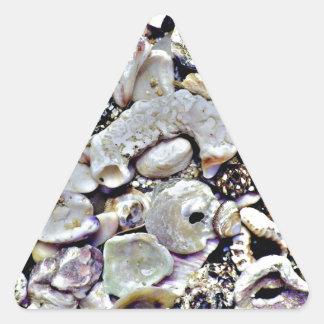 Hawaii Shells Close Up Triangle Sticker