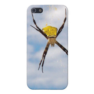 Hawaii Spider Case For iPhone SE/5/5s