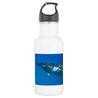 Hawaii Spinner Dolphin 18oz Water Bottle