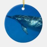 Hawaii Spinner Dolphin Christmas Ornaments