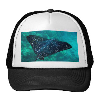Hawaii Spotted Eagle Ray Trucker Hat