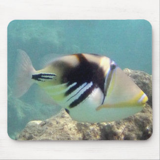 Hawaii State Fish - Humuhumunukunukuapua'a Mouse Pad