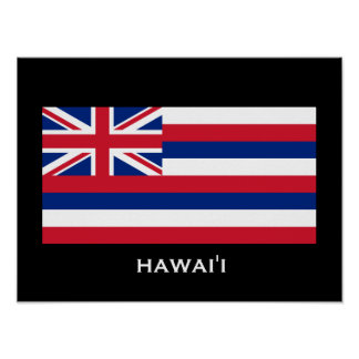 Hawai'i State Flag Poster
