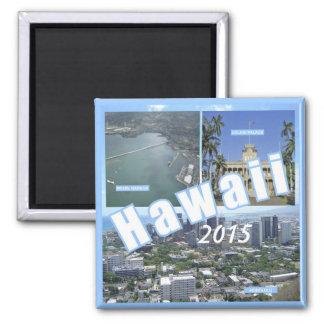Hawaii State Souvenir Fridge Magnets Change Year