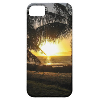Hawaii Sunset Sharks Cove iPhone 5 Cases