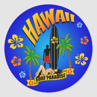 Hawaii Surfing Sticker