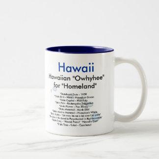 Hawaii Symbols & Map Coffee Mug