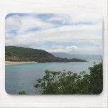 Hawaii Tapete De Raton