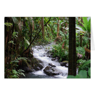 Hawaii the Big Island Card