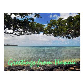 Hawaii Travel Postcard