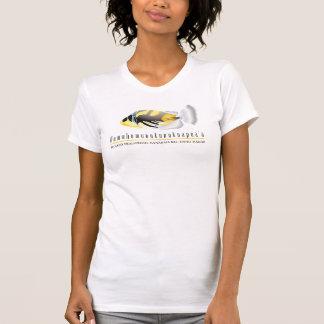 Hawaii Trigger Fish - Humuhumunukunukuapua'a Tee Shirt