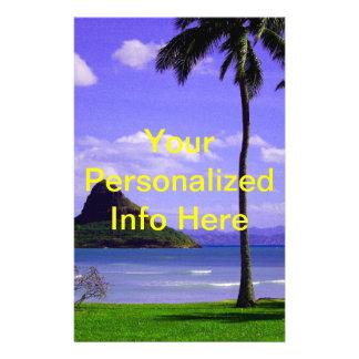 Hawaii Tropic Flyer