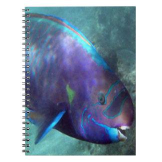 Hawaii Tropical Fish - Parrot Fish Spiral Notebook