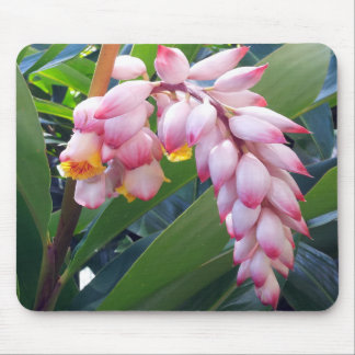 Hawaii Tropical Flower Mouse Pad