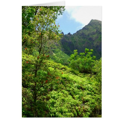 Hawaii tropical tarjeta de felicitación