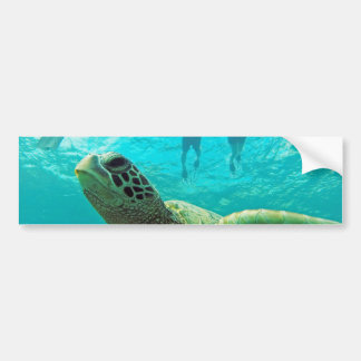 Hawaii Turtle and Snorkelers Bumper Sticker