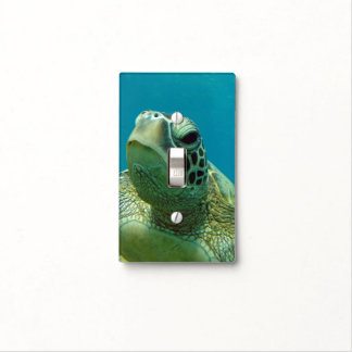 Hawaii Turtle Light Switch Cover