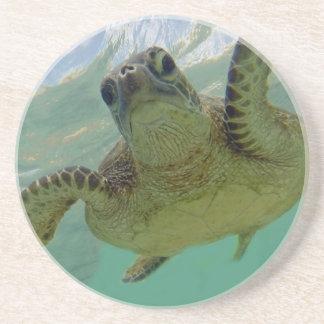 Hawaii Turtle Sandstone Coaster