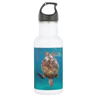 Hawaii Turtle Shell Water Bottle