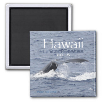Hawaii USA Fridge Magnet Whale Change Year