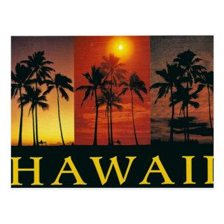 Hawaii Vintage Postcard Post Card