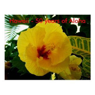 Hawaii Yellow Hibiscus Statehood Postcard