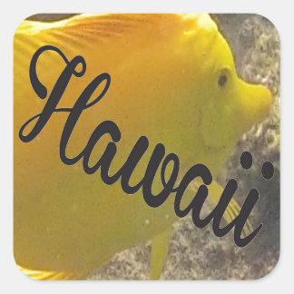 Hawaii Yellow Tang Fish Square Sticker
