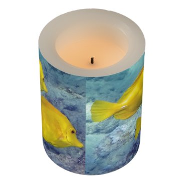 Hawaiian Themed Hawaii Yellow Tang Flameless Candle