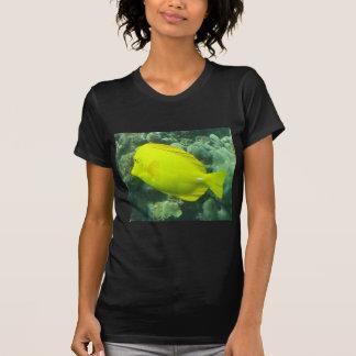 Hawaii Yellow Tang - Lau'i Pala Tee Shirt