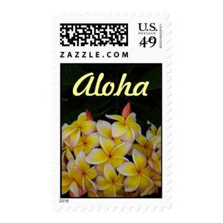 Hawaiian Aloha Plumeria Postage Stamp