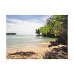 Hawaiian Beach Landscape Stretched Canvas Prints
