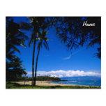Hawaiian Beach Postcard