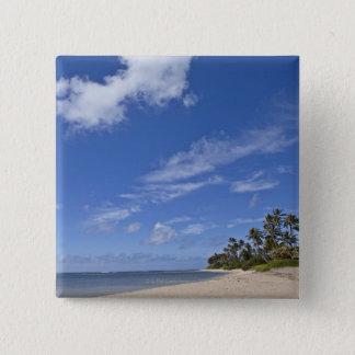 Hawaiian beach with palm trees. button