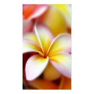 Hawaiian blanco de la flor de Hawaii del Frangipan Tarjetas De Visita