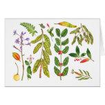 Hawaiian Botanical I Greeting Card