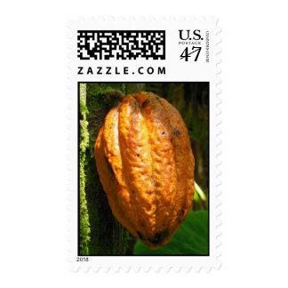 Hawaiian Cacao Pod Postage