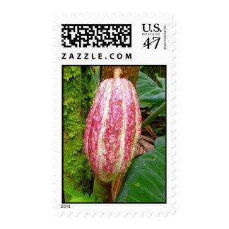 Hawaiian Cacao Postage