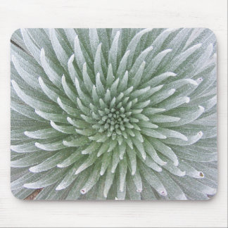 Hawaiian Cactus Succulent Mouse Pad