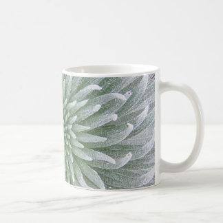 Hawaiian Cactus Succulent Mug