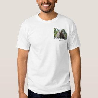Hawaiian Canoe Hut T Shirt
