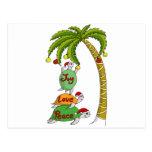 Hawaiian Christmas Turtle Santas Postcard