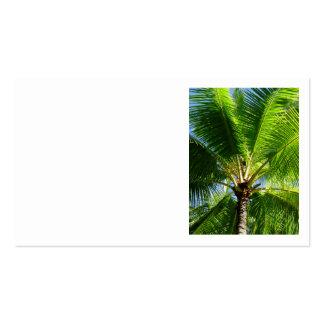 Hawaiian Coconut Palms Business Card