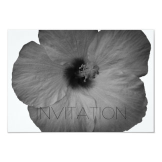 Hawaiian Dreams in Black and White Card