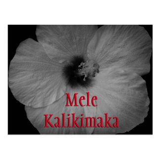 Hawaiian Dreams in Black and White Postcard